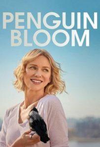 Penguin Bloom (2021) เพนกวิน บลูม ดูหนังฟรี HD หนังแนะนำ Netflix