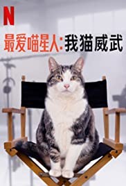 Kitty Love: An Homage to Cats (2021) ความรักแมวๆ แด่น้องเหมียว   Netflix