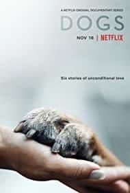Dogs: Season 2 (2021) เพื่อนแท้สี่ขา | Netflix